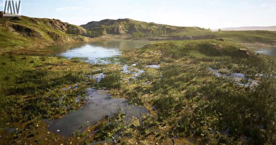 Meadow Wetlands Landscape